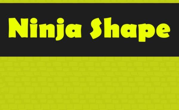 ninja shape | TuZagraj.pl